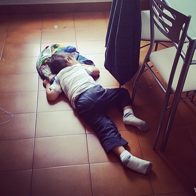 Griff crashing on the kitchen floor